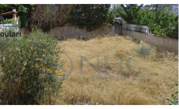 PLOT FOR SALE IN TALA VILLAGE AT A FRACTION OF  THE REAL VALUE